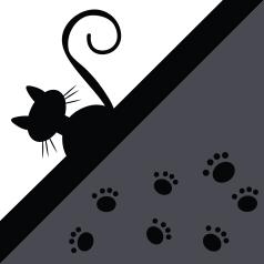 SRTB-cat&paws